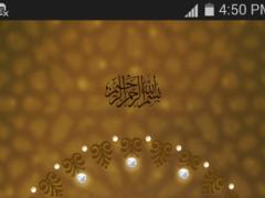 Tasbeeh-Praise Counter 1.0 Screenshot