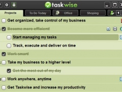 Taskwise 3.0.74 Screenshot