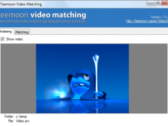 Teemoon Video Matching 1.0.5 Screenshot