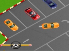 Teenage Driving Test Pro 1.0 Screenshot