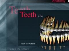 Teeth Info vii 1.0 Screenshot