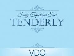 TENDERLY 1.0.1 Screenshot