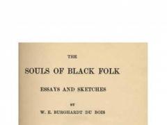 The Souls of Black Folk 1.0 Screenshot