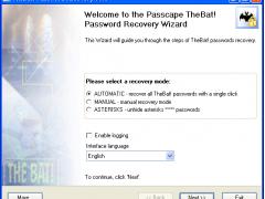 TheBat! Password Recovery 1.6.3 Screenshot