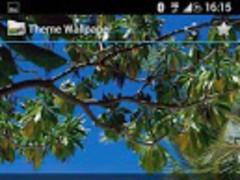 Theme Wallpaper Pro 1.27 Screenshot