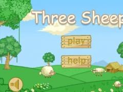 Three Sheep 1.3 Screenshot