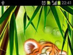 Tiger cub live wallpaper Pro 1.0.1 Screenshot