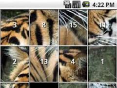 Tiger Puzzles 1.5 Screenshot