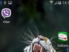 Tigers SHAKE and Chnage LWP 1.00 Screenshot