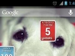 Timedget 0.21 Screenshot