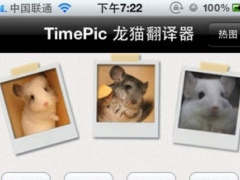 TimePic Chinchilla Talk 1.0.1 Screenshot