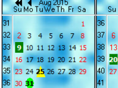 TMS Planner Calendars and DatePickers 2.2.2.1 Screenshot