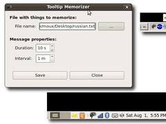 ToolTip Memorizer 0.0.2 Screenshot