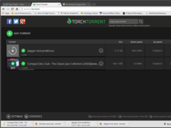 Review Screenshot - The multifunctional browser