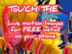 Touch the Fish Live Wallpaper 32 Screenshot