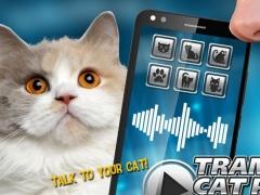 Translator Cat Pet Joke 1.0 Screenshot