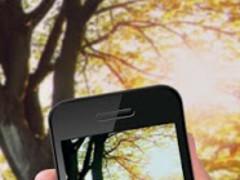 Transparent Screen: Camera app 1.7 Screenshot
