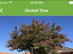 Tree ID Australia 1.4 Screenshot