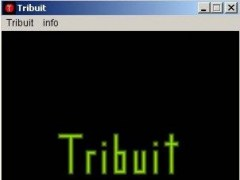 Tribuit - vocabulary trainer in Java  Screenshot