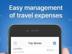 Trip Words FULL - Business Report 1.0 Screenshot