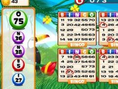 Tropical Heaven Bingo 1.0 Screenshot