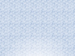TrueBlue Merchant 2.0.1 Screenshot