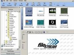 Turbo Browser Express 3.0 Screenshot