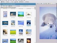 FileStream Turbo Browser 11.6.002060418 Screenshot