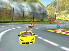 Turbo Car Rally Racing 3D 1.0 Screenshot