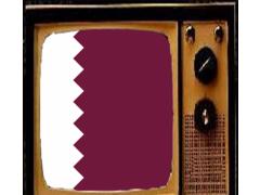 TV From Qatar Info 1.0 Screenshot