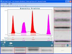 UN-SCAN-IT gel 7.1 Screenshot