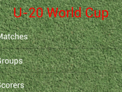 Under 20 World Cup Turkey 2013 1.0.11 Screenshot