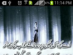 Urdu Poetry SMS 8000+ 7.1 Screenshot