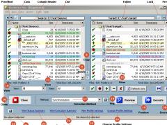 ViceVersa PRO 2.0 Screenshot