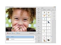 Video Capture Master 8.2.0.28 Screenshot