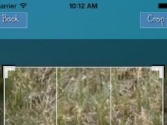 Video Resize 1.0 Screenshot