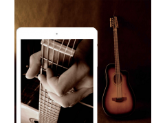 Virtual Guitar PRO 1.0 Screenshot