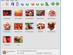 Visual LightBox 4.8.3 Screenshot
