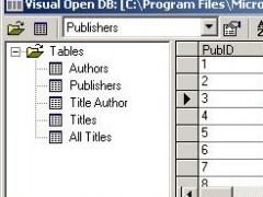 Visual Open DB 1.75 Screenshot