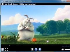 Free Media Player 1.6.11.520 Screenshot