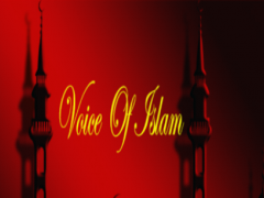 Voice of Islam: Islamic Speech 1.1 Screenshot