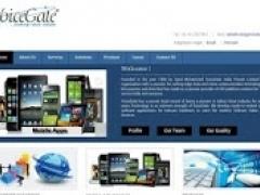 VoiceGate Website 0.90 Screenshot