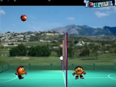 Volleyball Fight 1.0 Screenshot
