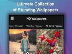 wallpaper hd -cool backgrounds 1.0 Screenshot