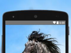 Wallpapers Horse 4K UHD 7.0 Screenshot