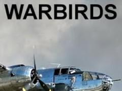 Warbirds: B-25 Mitchell 1.0.2 Screenshot