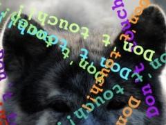 Watchdog! 1.20 Screenshot