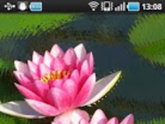 Water Lily 2.5.0 Screenshot