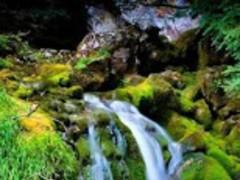 Waterfall 3D Live Wallpaper HD 1.0 Screenshot