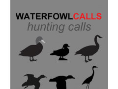 Waterfowl Hunting Calls 1.0 Screenshot